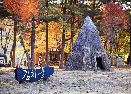 Hành trang cho du khách khi đến Hàn Quốc vào mùa thu