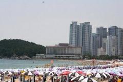 Lạc lối ở Busan, Hàn Quốc vào mùa hè