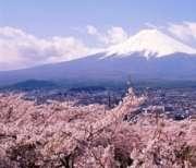 Vé máy bay đi Nhật Bản giá rẻ tại TPHCM