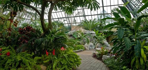 2 Muttart Conservatory